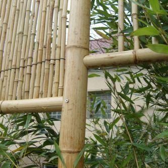 Bambus Rollzaun