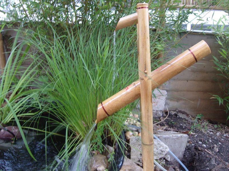 Bambus Augsburg Wasserspiele Und Wasserspeier